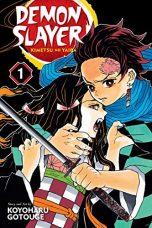 Demon Slayer: Kimetsu no Yaiba (EN) T.01 | 9781974700523