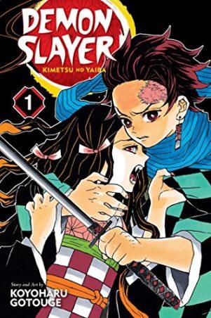 Demon Slayer: Kimetsu no Yaiba (EN) T.01   9781974700523