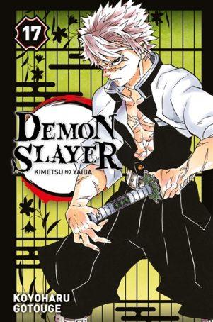 Demon Slayer T.17 | 9782809496987